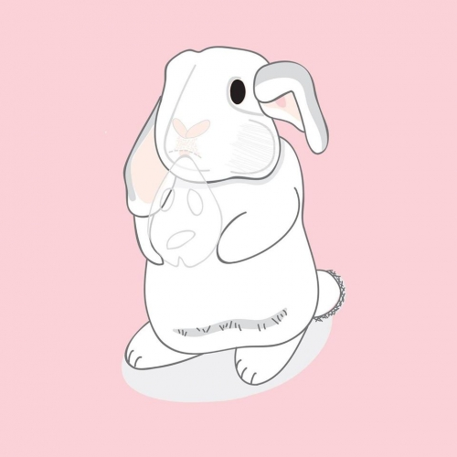兔兔形象保養品,兔兔形象生活用品